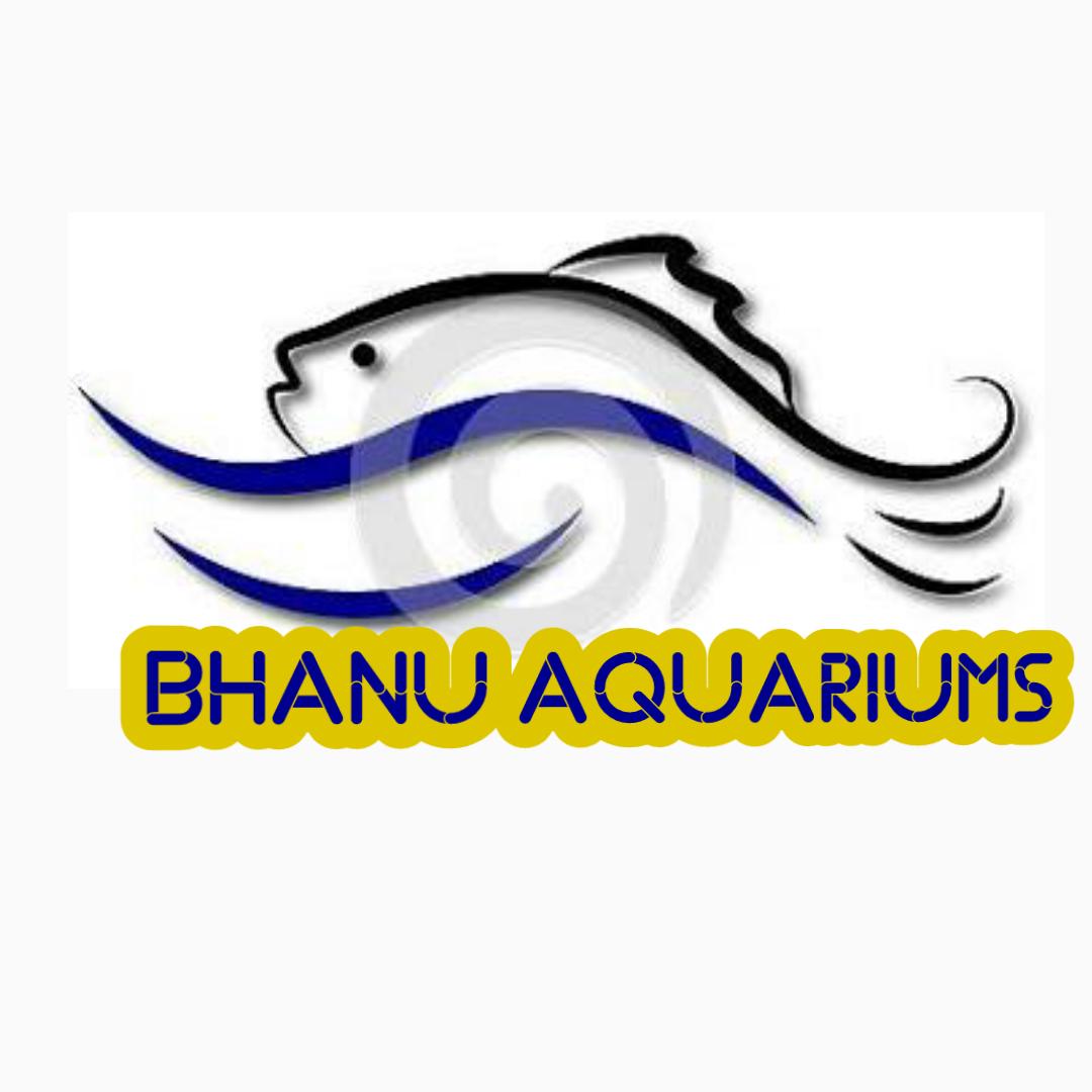 Fish aquarium jayanagar - Fish Aquarium Jayanagar